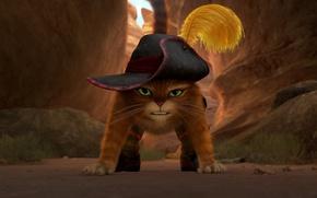 Обои кот в сапогах, Puss in Boots, мультфильм