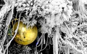 Картинка снег, новый год, Ёлка, новогодние игрушки, Новогодний шар