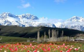 Картинка Горы, Киргизия, Хайдаркан