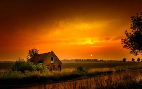 Картинка поле, ночь, природа, дом