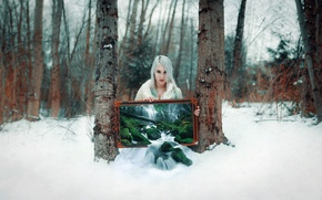 Картинка winter, snow, tree, cold, winter transmissions, grove