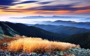 Картинка горы, туман, деревья, панорама, вид, green decline, Higlands, красивейший, облака, небо, горизонт, долина, лес