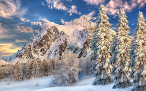 Картинка зима, небо, облака, снег, деревья, пейзаж, горы, ель