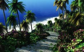 Обои цветы, пальмы, море, ступеньки, лестница, зелень, тропики