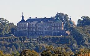 Обои деревья, ветки, замок, Украина, стая птиц, Lviv, Pidhirtsi Castle