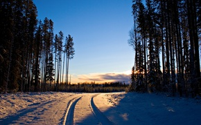 Картинка зима, дорога, лес, снег, деревья, дерево, рассвет, пейзажи, дороги, Canon EOS 20D, следы свет, 2560x1600 …