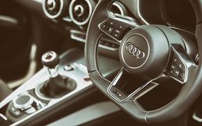 Картинка Audi, руль, салон, Interior, TTS