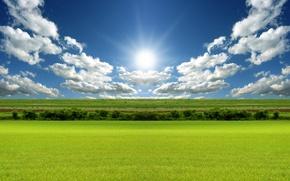 Обои 155, солнце, поле, облака