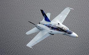 Картинка истребитель, Hornet, перехватчик, CF-18