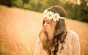 Картинка лето, девушка, настроение, ромашки, луг