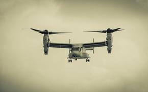 Картинка конвертоплан, Bell V-22 Osprey, Скопа