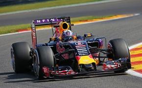 Картинка Formula 1, Red Bull, Daniel Ricciardo