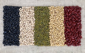 Обои beans, variety, colors