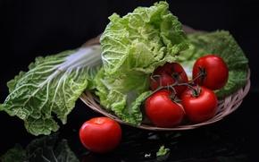 Обои овощи, помидоры, салат