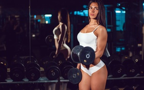 Обои arms, fitness, gym, brunette, dumbbell, workout, pose