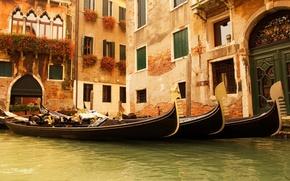 Обои цветы, италия, гондолы, вода, венеция, дома, окна