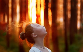 Картинка лес, девушка, закат, дым, вечер