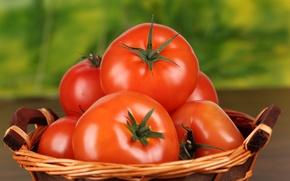 Картинка еда, красные, томат, помидоры