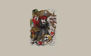Картинка оружие, надпись, птица, череп, минимализм, голова, перья, пират, попугай, скелет, борода, pirate