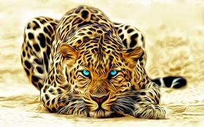 Картинка глаза, голубые, леопард, лежит, окрас