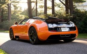 Картинка дорога, машины, черный, спорт, Bugatti Veyron, кар, Vitesse, деревья., Бугатти Вейрон, оранжево