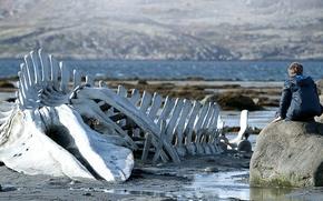 Картинка cinema, rock, beach, sea, water, boy, sand, movie, film, bones, Leviathan, 2014