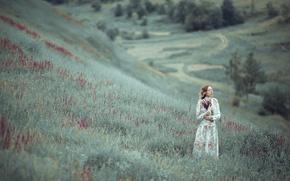 Картинка трава, девушка, цветы, холм, пригорок, Violet tale
