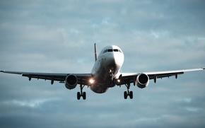 Картинка небо, авиация, самолет, аэропорт, внуково