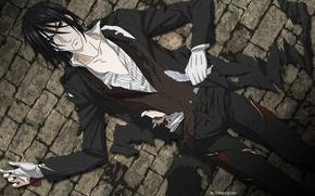 Картинка аниме, арт, Sebastian Michaelis, тёмный дворецкий
