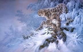 Картинка зима, лес, снег, арт, Снежный барс