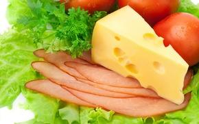 Обои сыр, помидоры, петрушка, листья салата, балык