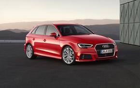 Картинка Audi, хетчбек