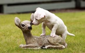 Картинка собака, щенок, скульптура, оленёнок, Джек-рассел-терьер