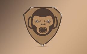 Картинка злость, логотип, обезьяна, щит