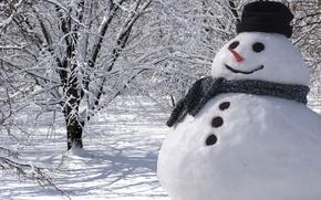 Картинка зима, снег, деревья, пейзаж, природа, Новый Год, Рождество, снеговик, Christmas, New Year