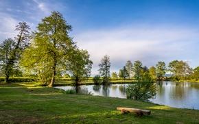 Картинка зелень, трава, деревья, озеро, лавочка, Хорватия, Zagreb, Bobovica
