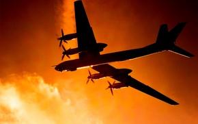 Картинка авиация, самолет, медведь, Туполев, стратегический бомбардировщик-ракетоносец, Ту-95МС, Ту-95, ВКС РФ