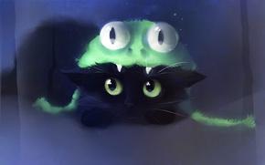 Обои кошка, взгляд, team frog, apofiss, котенок, шапка, лягушка, рисунок, художник, кот