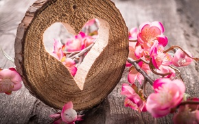Картинка heart, wood, flowers, still life, table