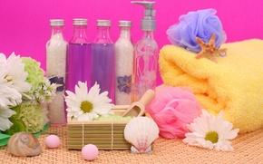 Обои цветы, камни, полотенце, раковина, кристаллы, flowers, rocks, спа, bottles, соль, shell, spa, бутылочки, salt, towel, ...