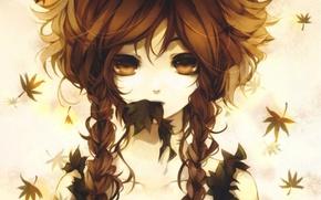 Картинка листья, лицо, рыжая, плечи, art, косы, большие глаза, shiki