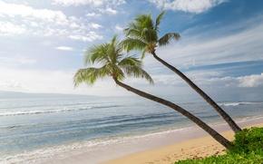 Картинка Небо, Песок, Природа, Волны, Пальмы, Гавайи, США, Побережье