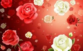 Картинка цветы, фон, обои, розы