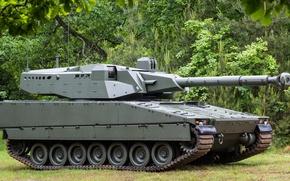 Картинка armor, trees, military, army, tank, armored, vegetation, machine gun, swedish, French, cannon, Swedish, heavy weapon, …