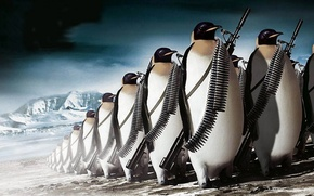 Картинка gun, ammunition, fantasy, ice, army, rifle, weapon, animal, the Antarctic, penguins