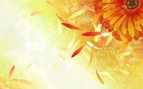 Картинка цветок, краски, вектор, лепестки