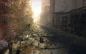 Картинка город, трещины, восход, заросли, улица, арт, руины, постапокалипсис, заброшенность, Josiah