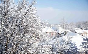 Картинка зима, небо, снег, деревья, ветки, природа, здания, дома, крыши
