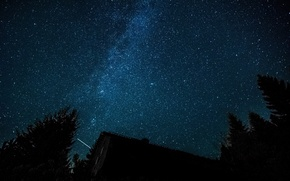 Картинка лес, космос, звезды, деревья, Млечный Путь, жилье