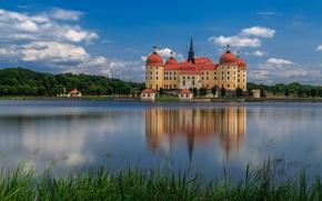 Картинка вода, отражение, Германия, Germany, Moritzburg Castle, Замок Морицбург